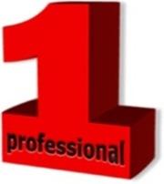 1professional.by - производство и продажа мебели и дверей в Гомеле: ку