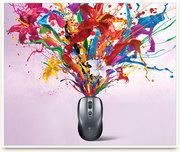 Рекламный дизайн на курсах обучение в Гомеле