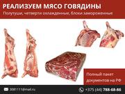 Мясо говядины. Полный пакет документов на РФ.