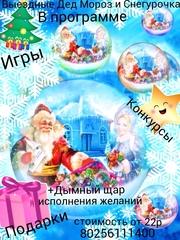 Дед Мороз и Снегурочка на дом в Гомеле!