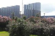 Апартаменты в Грузии. Недвижимость в Батуми.
